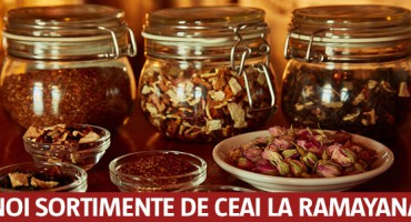 sortimente-ceai-Ramayana-NEWSLETTER_2